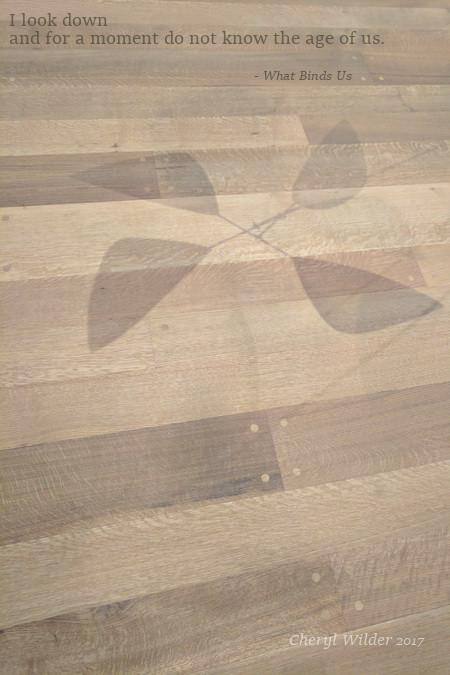shadow of mobile on hardwood floor