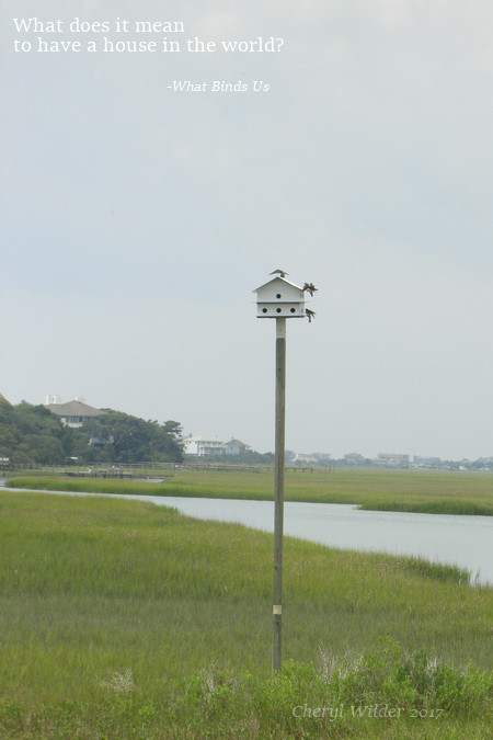 birdhouse over marshland with three birds